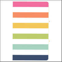 BOLD STRIPE Traveler's Notebook Insert